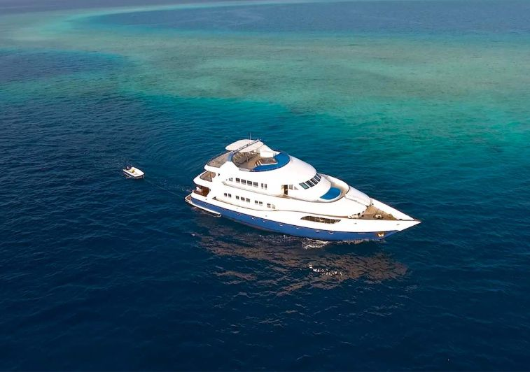 Honors Legacy Surf charter Maldives