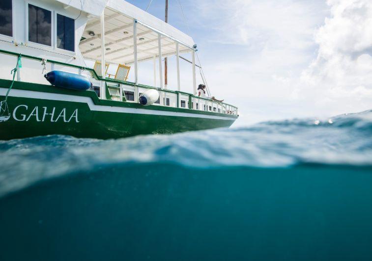 Gahaa surf charter Maldives