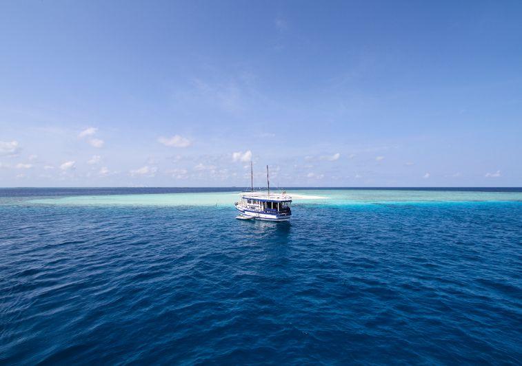 Koimala surf charter Maldives