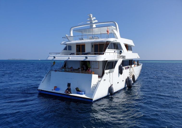 Orca Surf charter Maldives