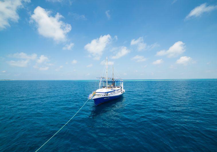 Sea Coral surf charter Maldives
