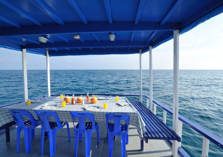 Sea Coral surf charter Maldives
