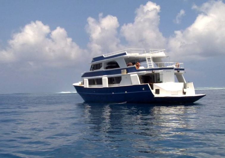 Blue star open boat charter Maldives
